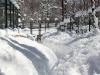 Вольерный комплекс. Красная Поляна
